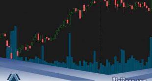cara menanam saham di perusahaan terbuka